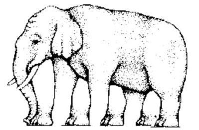 optische illusie - olifant